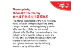 24-ENGLISH-THERMOPLASTY